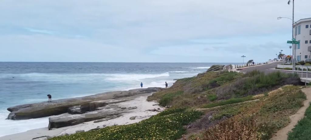 Playa de Windansea